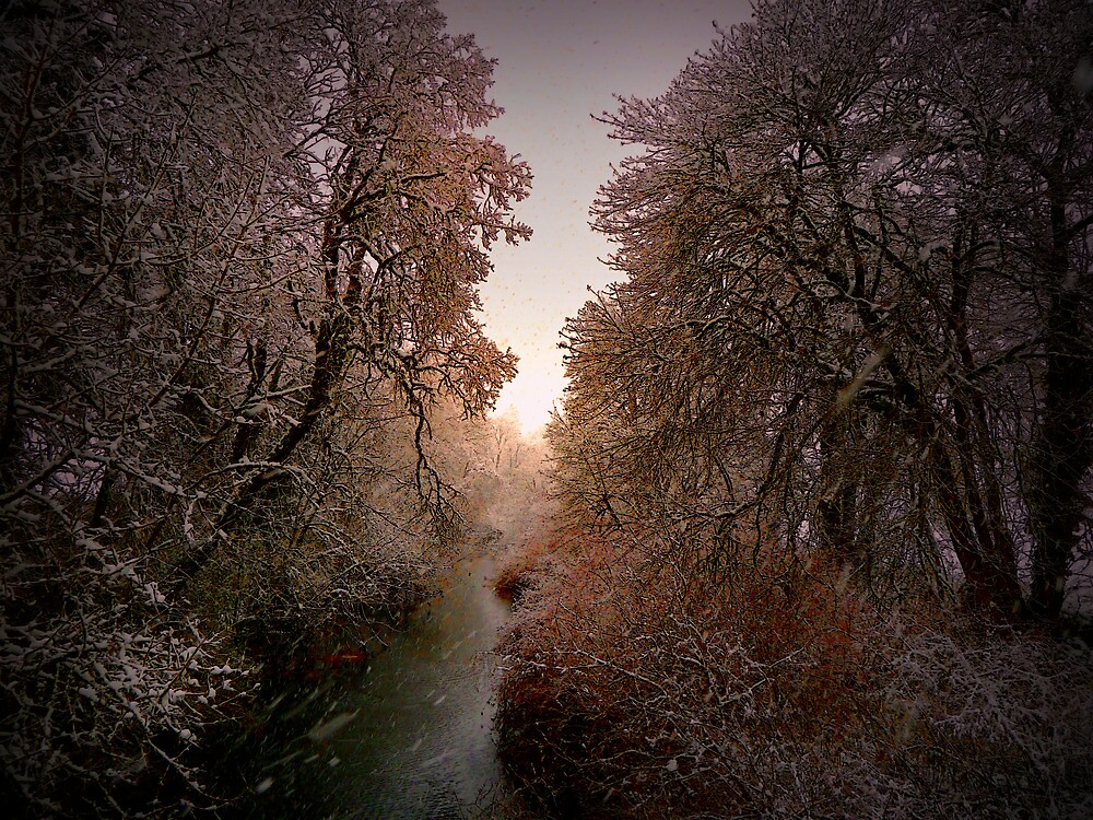 Sunrise In The Snow by Charles & Patricia   Harkins ~ Picture Oregon