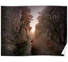 Sunrise In The Snow Poster