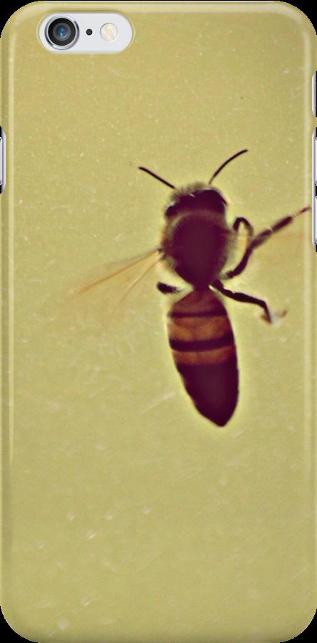 Honey bee by Fiona Christensen