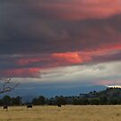 Sunset near Murrumbateman by Werner Padarin