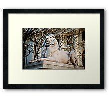 Lion-New York Public Library Framed Print