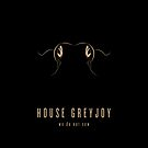 House Greyjoy Minimalist iPhone Case by liquidsouldes