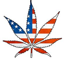 Marijuana Leaf American Flag by Brett Gilbert