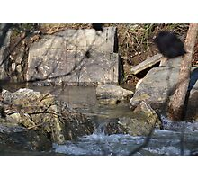 Natural Clean-water Pool Photographic Print