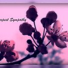 Deepest Sympathy card by Angie O'Connor
