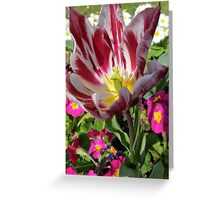 Colour Riot Greeting Card