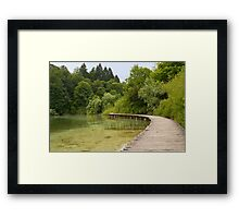Walkway at the lake. Framed Print