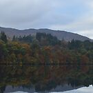 Pitlochry Fish Ladder in Autumn by Kirsty Auld
