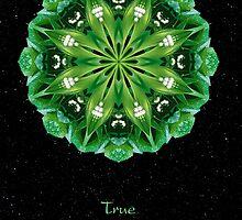 True II by Karen Casey-Smith