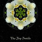 The Joy Inside II by Karen Casey-Smith
