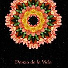 Danza de la Vida II by Karen Casey-Smith