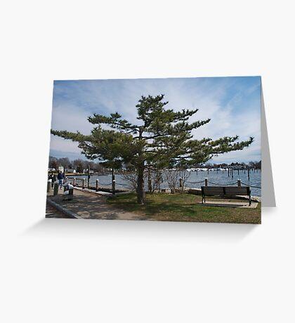 Overlooking Wickford Harbor Greeting Card