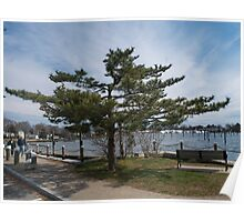 Overlooking Wickford Harbor Poster
