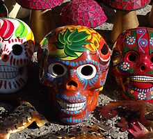 Wonderful Skulls - Calaveras Coloradas by Bernhard Matejka