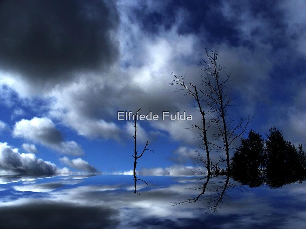 Reaching ! by Elfriede Fulda