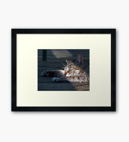 Lazy Days of Spring Framed Print