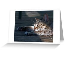 Lazy Days of Spring Greeting Card