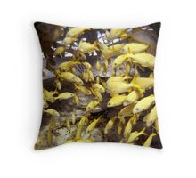 French Grunts Sheltering at Thunderdome Throw Pillow