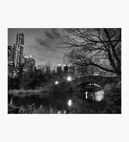 New York - Central Park 006 BW Photographic Print