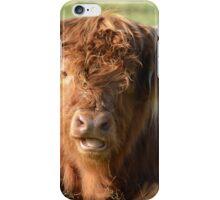 Highland cattle iPhone Case/Skin
