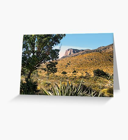 Guadalupe Mountains NP (2) Greeting Card