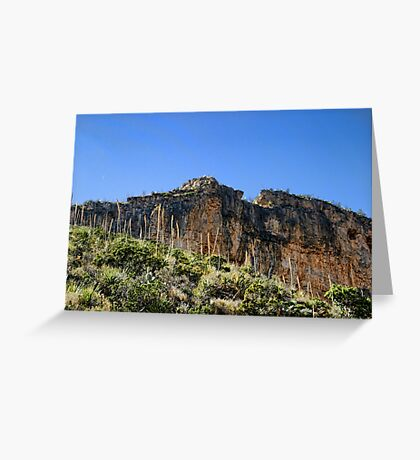 Guadalupe Mountains NP (3) Greeting Card