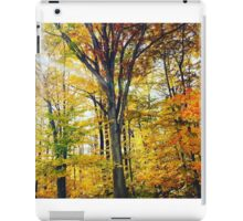 Fall  Serenity iPad Case/Skin