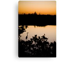 sunset part 2 Canvas Print