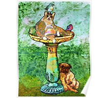 Fat Cat and Pug Poster