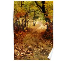 Maple Forest Path Poster