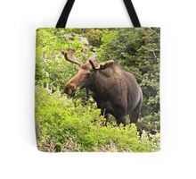 Bull Moose Side Shot  Tote Bag