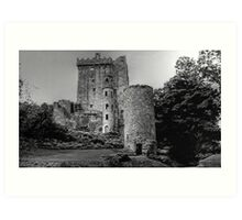BLARNEY CASTLE,   COUNTY CORK,  IRELAND............! Art Print