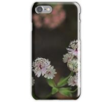 Small Flowers iPhone Case/Skin