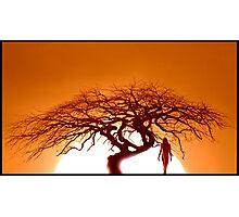 """""""Kalahari Gold"""" Photographic Print"""