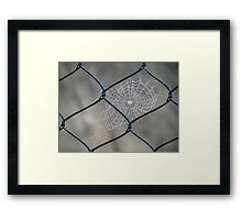 Web and Wire Framed Print