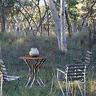 Picnic spot by Julie Sherlock