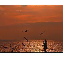 Bird Meets Birds Photographic Print