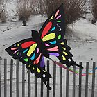 Butterfly Kite by GalleryThree
