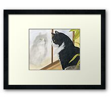 Tuxedo Cat Reflection Cathy Peek Animal Art Framed Print