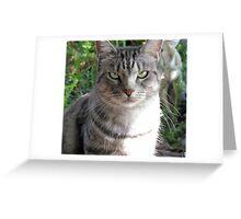 My Beautiful Mia.......... Greeting Card