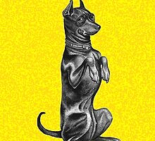 Begging Dog - iPhone case by KenRinkel