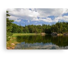 Idyllic lake in summer. Canvas Print