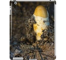 freshly born iPad Case/Skin