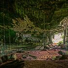 Niah Caves, Sarawak Malaysia by Dean Mullin