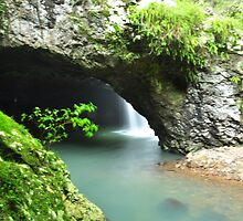 natural bridge  by warren dacey