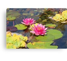 Lovely Garden Pond Canvas Print