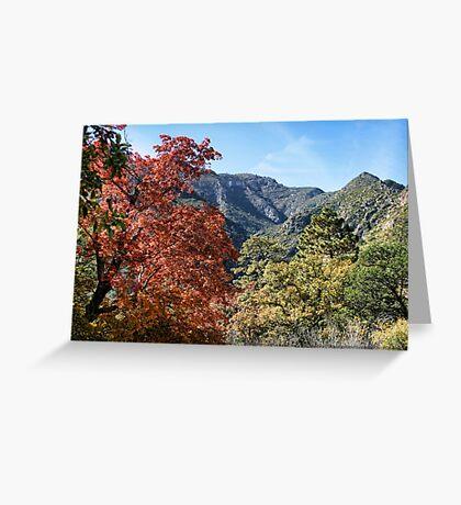 McKittrick Canyon (4) Greeting Card