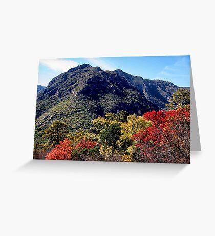 McKittrick Canyon (5) Greeting Card