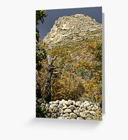 McKittrick Canyon (6) Greeting Card