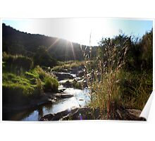 Klipriviersberg Nature Reserve Poster